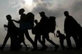 migrantes-2 (1)